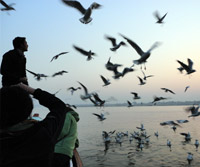 Sunrise boat ride, Varanasi
