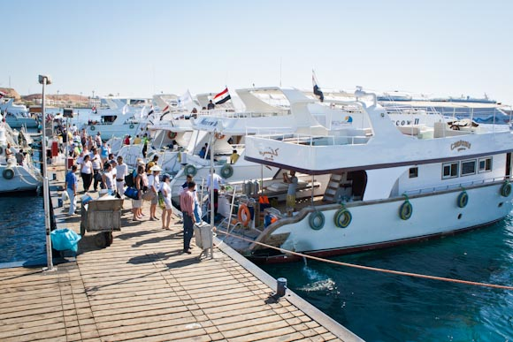 Marina at Sharm el Sheikh - boat to Ras Mohamed
